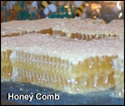 honeycomb Weston A Price