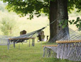hammocks homestead