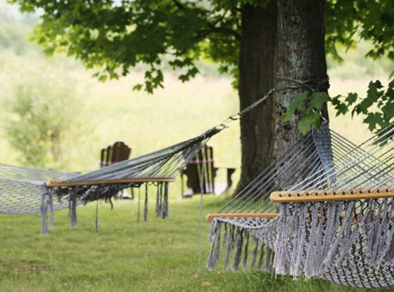 hammocks homesteading