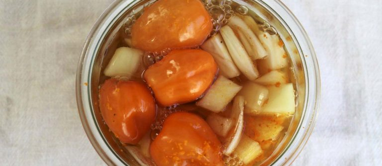 fire cider for colds and flu homesteading