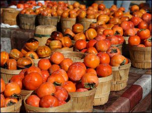 selling persimmons