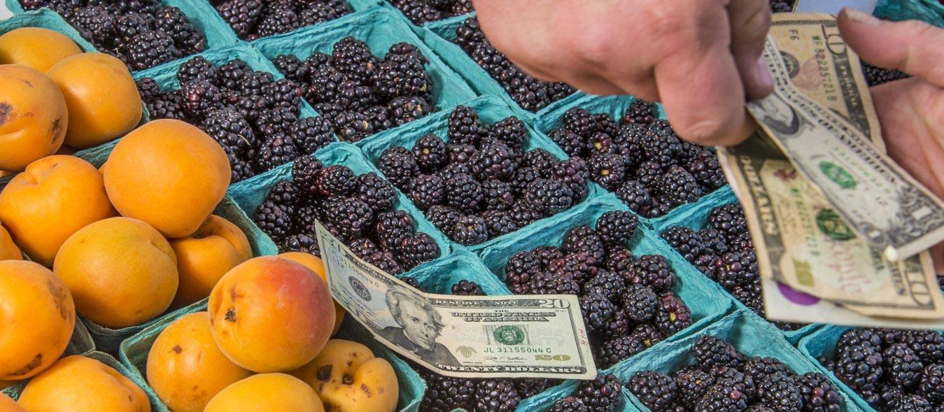 profitable homestead, turn hobby farm into profitable business, homestead business checklist, building a homestead business, homesteading, farmers market