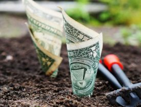 How to Save Money on Taxes by Homesteading