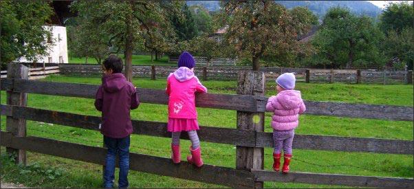 children on a wood fence, raising kids in the country, country kids, raise country kids,keeping country kids safe around guns, kid friendly chickens, homesteading, homestead