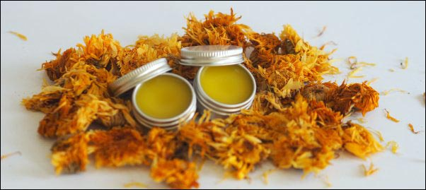 calendula salve, salve making ingredients, herbal-salve-making, herbal salve recipes, how to make herbal salves
