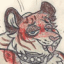 Awe Tiger