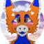 Nico the Furry