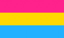 330px-Pansexuality_flag.svg.png