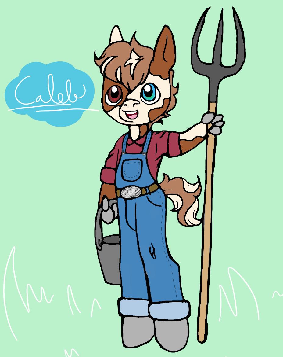 Caleb - A cute lil farm pony