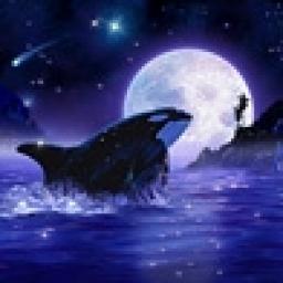 Orca Moon.jpg