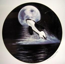 Orca Moon Jump.jpg