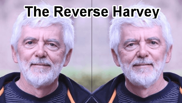 The Reverse Harvey image