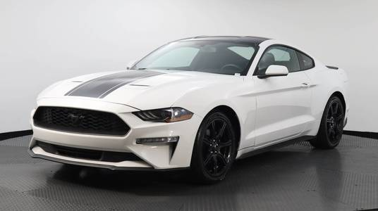 Used FORD MUSTANG 2019 MARGATE ECOBOOST PREMIUM