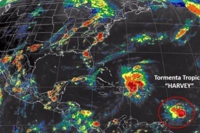Emiten Alerta Gris en el estado de Veracruz por la tormenta tropical Harvey