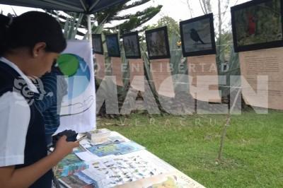 Catalogarán biodiversidad de la zona norte de Veracruz