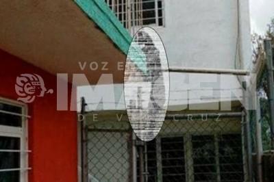 Investigan muerte de un perro en Xalapa