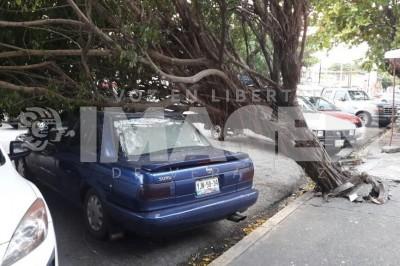 Norte causa daños materiales en la zona conurbada de Veracruz