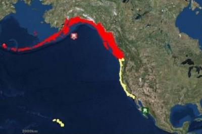 Sismo de 8.2 grados sacude la costa de Alaska; hay alerta de tsunami