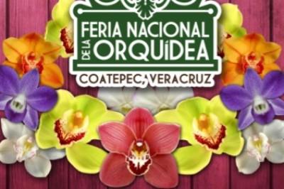 Del 24 de marzo al 1 de abril, Coatepec, será sede de la Feria Nacional de la Orquídea