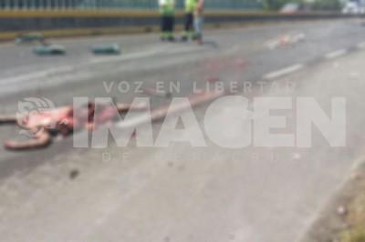 Quedó destrozado en autopista Tinajas-Cosamaloapan