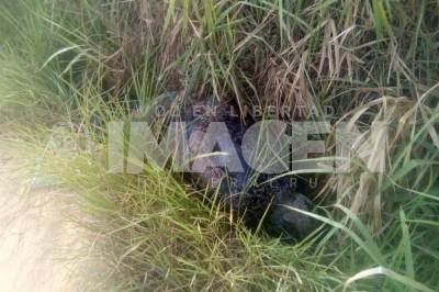 Localizan cadáver putrefacto de un hombre en Rodriguez Clara