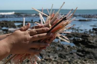 Prohiben el uso de bolsas de plástico y popotes en Veracruz