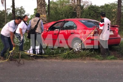 En accidente muere Cosamaloapeño al estrellarse contra una palmera en Tres Valles