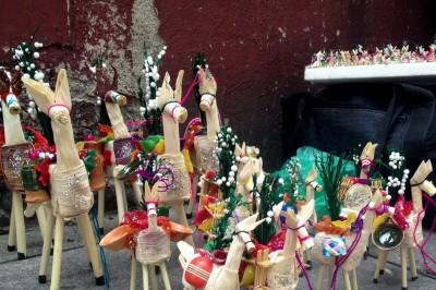 Conozca sobre el Día de las mulitas