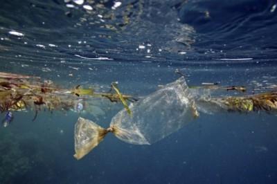 Para 2050 habrá más plástico que peces en los océanos: ONU
