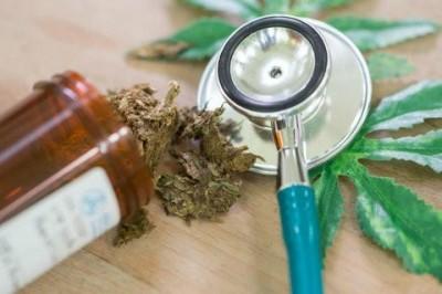 Preparan legalización de mariguana con fines recreativos en Canadá