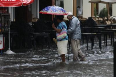 Las inundaciones en Veracruz son provocadas por falta de árboles