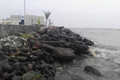 Operadora de agua de Boca del Río, una farsa (+ FOTOS)