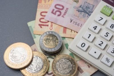 Salario mínimo por encima de 100 pesos para 2019, será la meta de la STPS