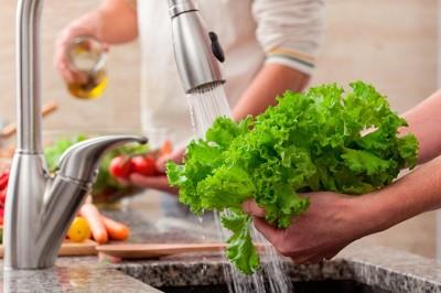 Nutriólogos llaman a los veracruzanos a ser más higiénicos con los alimentos