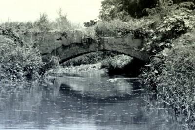 El puente de Río Medio