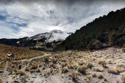 Impune tala en el Pico de Orizaba