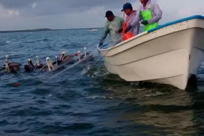 Nortes en Veracruz reducen la pesca: Joaquín Sosa