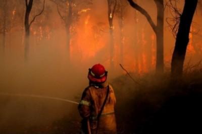 Incendios forestales en Australia obligan a evacuación masiva