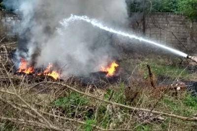 Fuerte incendio en El Cocal provoca rápida movilización