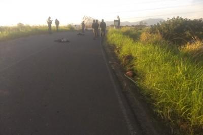 Autoridades hallan cuerpo desmembrado en medio de la carretera