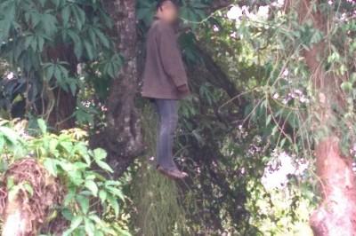 Joven se quita la vida al colgarse de un árbol