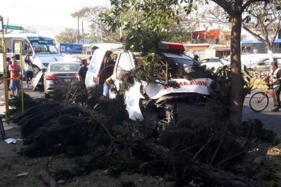 Ambulancia se impacta con un árbol en calles de Veracruz