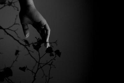 Poema:   'Diálogos con el silencio'