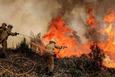 PC y Conafort en busca de aplicar NORMA Oficial para la prevención de incendios