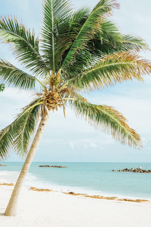 Key-West--Florida