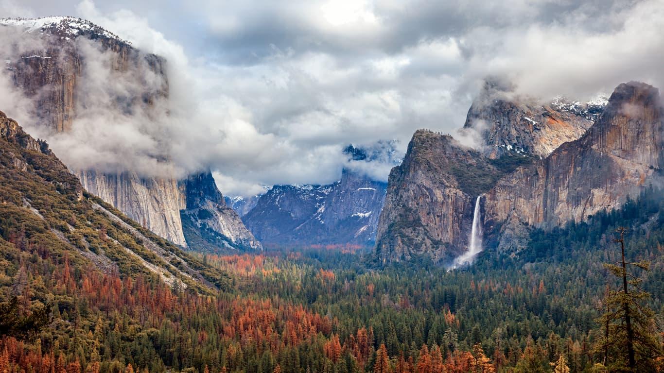 Scorpio---Yosemite