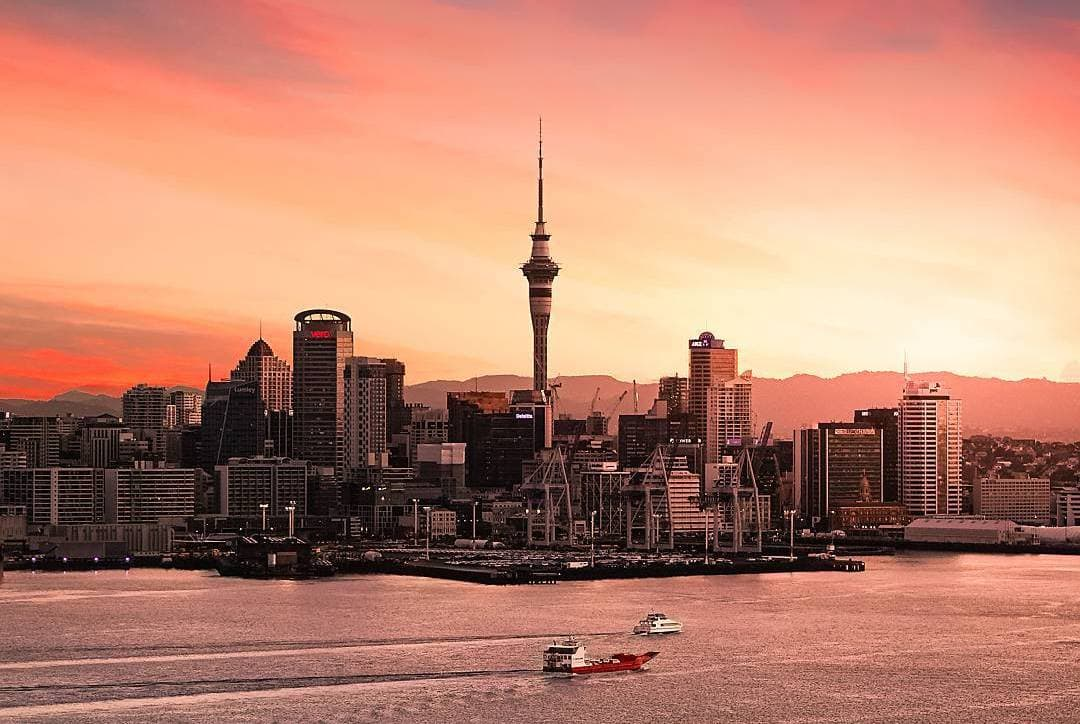 Edition 50: Auckland, New Zealand