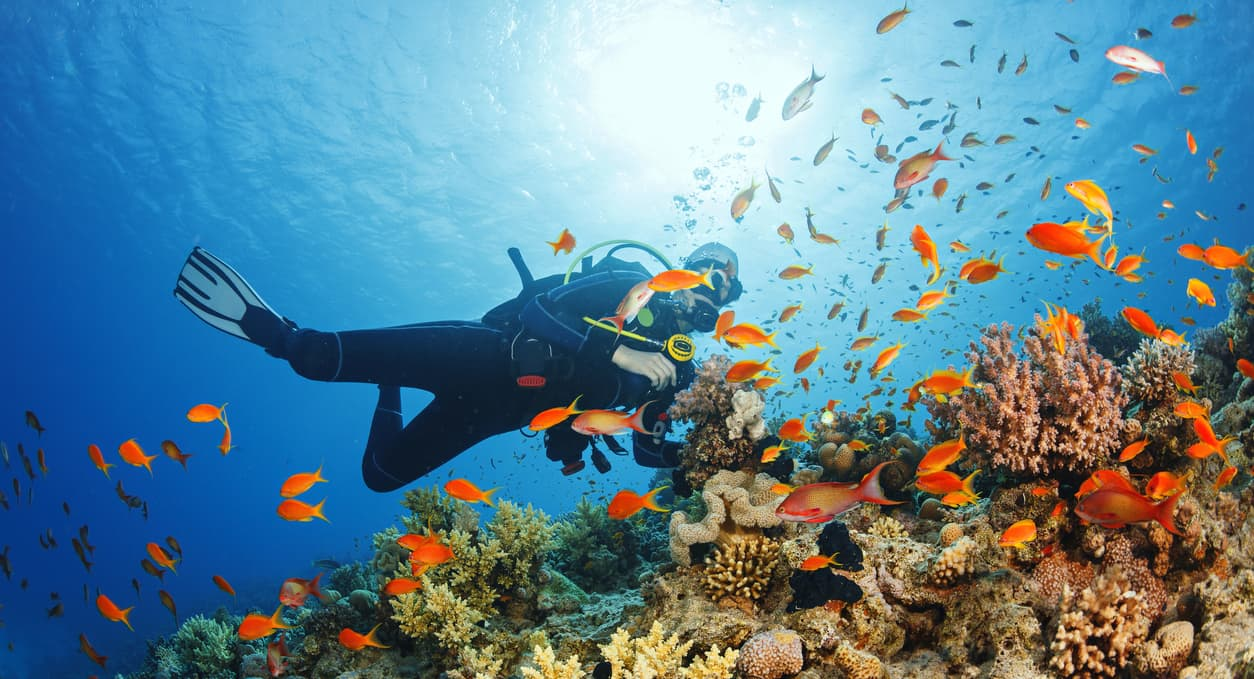 The Most Underrated Dive Spots Around the World