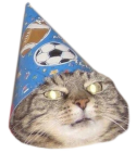 :wizard_cat: