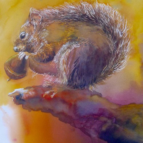 June 30 – Painting Fur and Feathers with Suzanne Hetzel